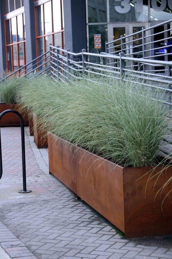 Trawy ozdobne w donicach - trawy na balkon i taras